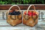 Thumbnail baskets filled with red and black currants