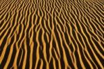 Thumbnail Sand patterns on a dune, In Tehak region, Acacus Mountains or Tadrart Acacus range, Tassili n'Ajjer National Park, Unesco World Heritage Site, Algeria, Sahara, North Africa