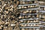 Thumbnail stacked up firewood