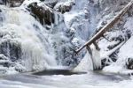Thumbnail Waterfall with icicles in Falkau, Black Forest, Baden-Wuerttemberg, Germany, Europe