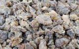 Thumbnail Frankincense, resin