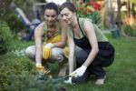 Thumbnail Two women gardening