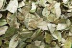 Thumbnail Coca leaves for sale in a Peruvian market, Cusco, Cuzco, Peru, South America