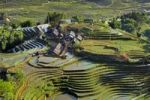 Thumbnail Houses, rice farmers, green rice terraces, rice paddies in Sapa or Sa Pa, Lao Cai province, northern Vietnam, Vietnam, Southeast Asia, Asia
