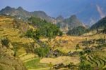 Thumbnail Mountain landscape with rice fields, Si Ma Cai District, Vietnam, Asia