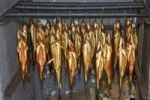 Thumbnail Smoked trout hanging in a smokehouse, Fuschl, Austria, Europe