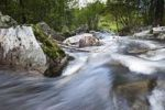 Thumbnail Stream landscape at Ryfylkevegen, Norway, Scandinavia, Northern Europe