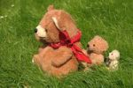 Thumbnail Teddy bear family sitting on grass