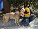 Thumbnail Boy, 9, with a dog
