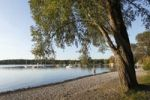 Thumbnail Herrsching, Ammersee Lake or Lake Ammer, five lakes region, Upper Bavaria, Bavaria, Germany, Europe, PublicGround
