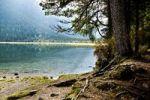 Thumbnail Lago di Dobiacco lake, Dolomite Alps, Italy, Europe