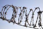Thumbnail Rolled barbed wire
