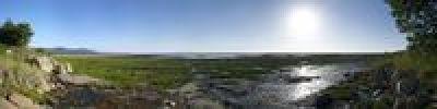 Thumbnail Panorama, Lake Manyara, Lake Manyara National Park, Tanzania, Africa