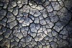Thumbnail Dried mud, Serengeti, Tanzania, Africa