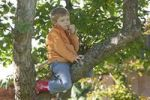 Thumbnail Little boy climbing on tree