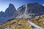 Thumbnail Hikers ascending Mt Paterno, above the Comici Refuge, Mt Croda dei Toni in the back, Sesto, Sexten, Alta Pusteria Valley, Dolomites, South Tyrol, Italy, Europe