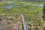 Thumbnail Marshes in Cepkeliu National Nature Reserve, Lithuania, Europe