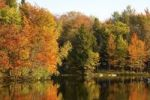 Thumbnail Trees in autumnal colours reflected in lake, Iron Hill, Quebec, Canada