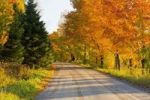 Thumbnail Country road in autumn, West Bolton, Quebec, Canada