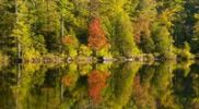 Thumbnail Baker pond in autumn, West Bolton, Quebec, Canada