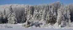 Thumbnail Winter landscape, Ville de Lac Brome, Quebec, Canada