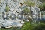 Thumbnail hot springs near fort Nakhl Oman
