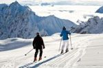 Thumbnail Cross-country skiers, Mt Zugspitze region in winter, Alps, Bavaria, Germany, Europe