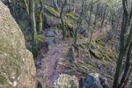 Thumbnail Babi Lom Nature Reserve, Southern Moravia, Czech Republic, Europe