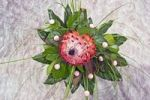 Thumbnail Flower arrangement with protea