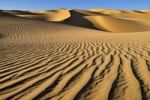 Thumbnail Small erg or sand dunes near Tehenadou, Adrar n'Ahnet, Adrar Ahnet, Algeria, Sahara, North Africa