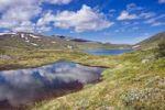 Thumbnail Landscape with Klepptjørna or Klepptjoerna lake, Skarvan and Roltdalen National Park, Skarvan og Roltdalen, Nord-Trøndelag or Nord-Troendelag county, Norway, Scandinavia, Europe