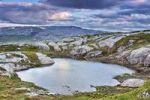 Thumbnail Lagoon near Eldbekkskardvatnet lake, Blafjella-Skjakerfjella National Park, Nord-Trøndelag county, Norway, Scandinavia, Europe