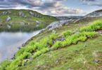 Thumbnail Eldbekkskardvatnet lake, Blåfjella-Skjækerfjella National Park, Nord-Trøndelag county, Norway, Scandinavia, Europe