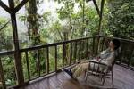 Thumbnail woman in rocking chair, Rara Avis Lodge, River Edge Cabin, Las Horquetas, Costa Rica