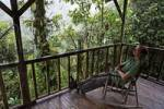 Thumbnail man in rocking chair, Rara Avis Lodge, River Edge Cabin, Las Horquetas, Costa Rica
