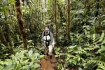 Thumbnail woman with backpack in rainforest, Rara Avis, Las Horquetas, Costa Rica