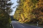 Thumbnail Rural road FO40 in Aufsesstal, Franconian Switzerland, Upper Franconia, Franconia, Bavaria, Germany, Europe