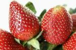 Thumbnail Strawberries (Fragaria), detail view