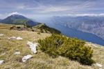 Thumbnail On Monte Altissimo above Nago, overlooking Lake Garda, with Monte Baldo at the rear, Trentino, Italy, Europe