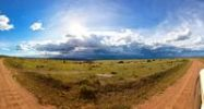 Thumbnail Thunderstorm brewing over the Masai Mara National Reserve, Kenya, East Africa, Africa, PublicGround