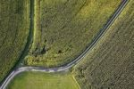 Thumbnail Aerial view, path through fields in Chiemgau, Upper Bavaria, Bavaria, Germany, Europe