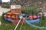 Thumbnail a colourful rowing boat before the aquarium, Porto Moniz, Madeira, Portugal