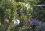 Thumbnail Perennial plants in a flower bed, small garden, Geretsried, Bavaria, Germany, Europe