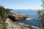 Thumbnail Views of the rocky coast and the sea from Ocean Trail, Acadia National Park, Mount Desert Island, Maine, New England, USA, North America, America