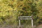 Thumbnail Sign, Steigerwald Nature Park, Lower Franconia, Franconia, Bavaria, Germany, Europe, PublicGround