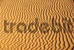 Thumbnail Corrugated sand Erg Chebbi Merzouga Morocco