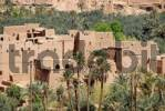 Thumbnail View into the old town ksar with palm trees Tinerhir Morocco