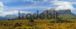 Thumbnail landscape at Overland Track in Cradle Mountain Nationalpark Tasmania Australia