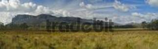 Thumbnail Pelion Plains on Overland Track in Cradle Mountain Nationalpark Tasmania Australia