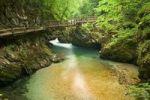 Thumbnail Vintgar gorge, Slovenia, Europe